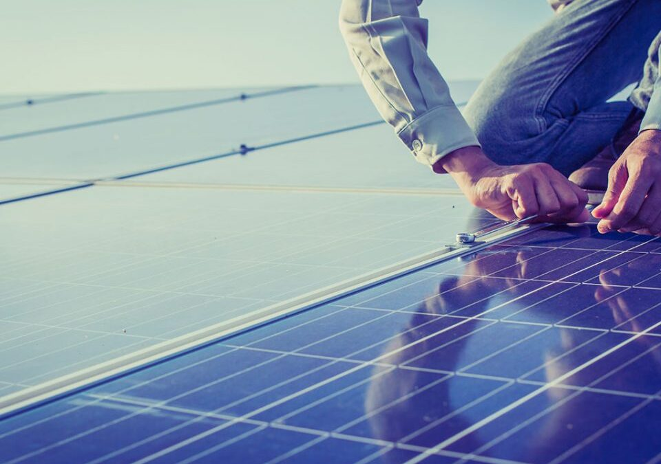 How to Keep Your Solar Panels in Good Working Order